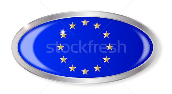 Eu banderą owalny przycisk srebrny europejski Zdjęcia stock © Bigalbaloo