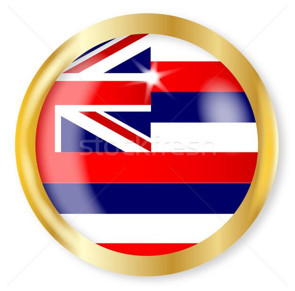 Hawai bandera botón oro metal circular Foto stock © Bigalbaloo