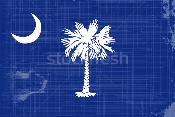 South Carolina State Flag Stock photo © Bigalbaloo