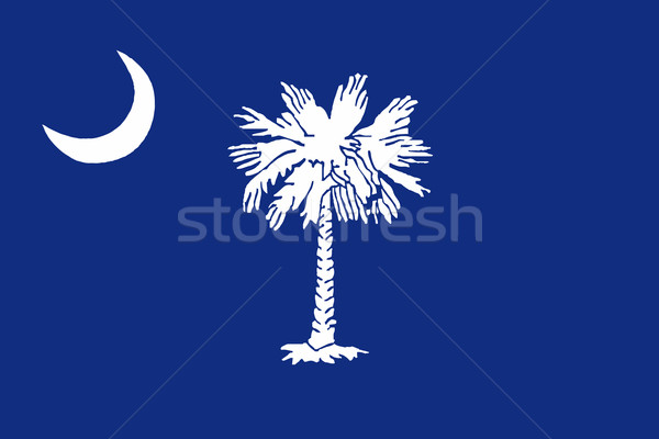 Stock photo: South Carolina State Flag