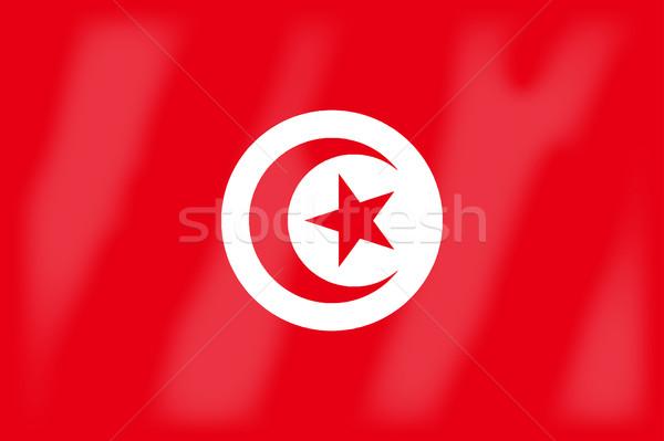Tunus bayrak Afrika ülke sanat Stok fotoğraf © Bigalbaloo