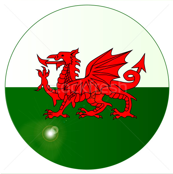 National Flag of Wales Button Stock photo © Bigalbaloo