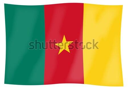 Kameroen vlag afrikaanse land kunst Stockfoto © Bigalbaloo