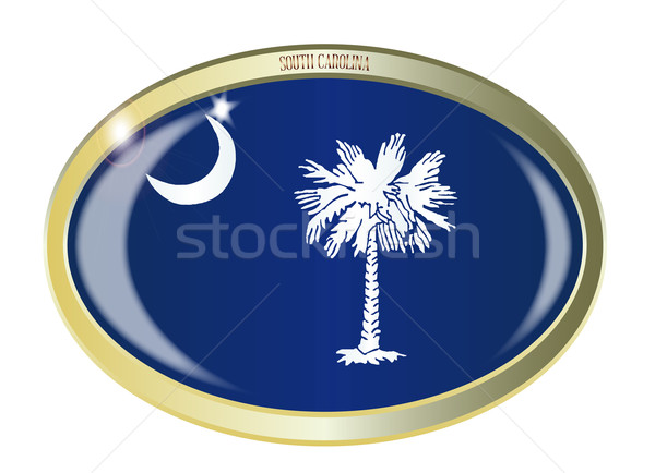 South Carolina vlag ovaal knop metaal geïsoleerd Stockfoto © Bigalbaloo