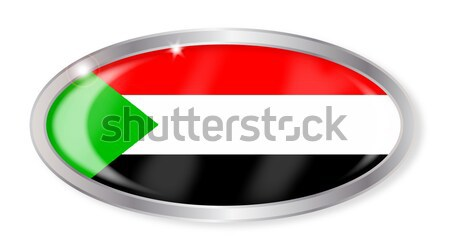 Palestine Flag Oval Button Stock photo © Bigalbaloo