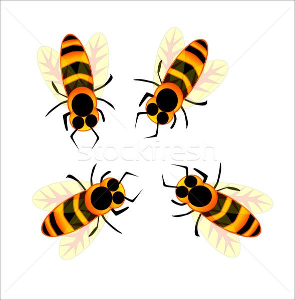 Bees Stock photo © Bigalbaloo