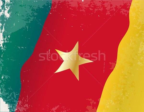 Камерун флаг Гранж африканских стране Африка Сток-фото © Bigalbaloo