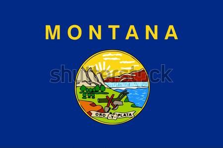 Montana bayrak ABD çizim grafik mühürlemek Stok fotoğraf © Bigalbaloo