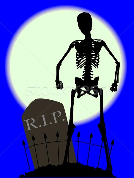 Cimetière os pierre tombale squelette clôture Photo stock © Bigalbaloo