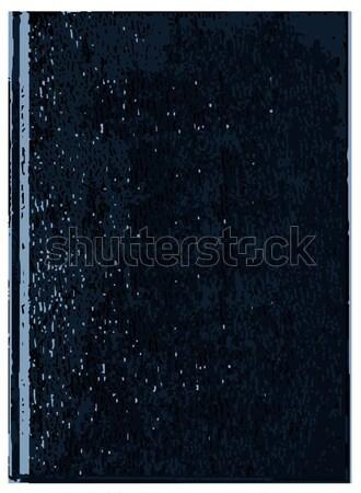 Blank Book Cover Stock photo © Bigalbaloo