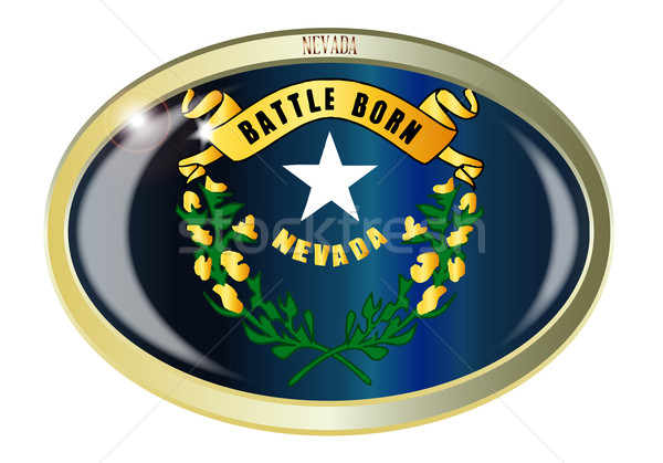 Nevada bandeira oval botão metal isolado Foto stock © Bigalbaloo