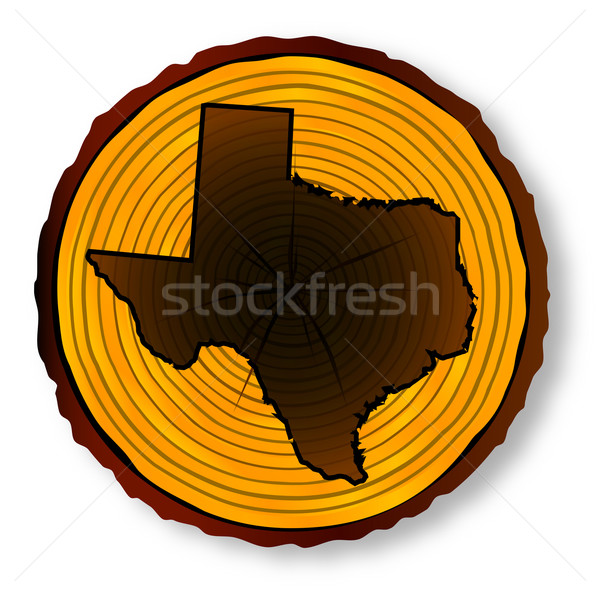 Texas Map On Timber End Section Stock photo © Bigalbaloo