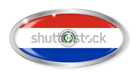 Парагвай флаг овальный кнопки серебро изолированный Сток-фото © Bigalbaloo