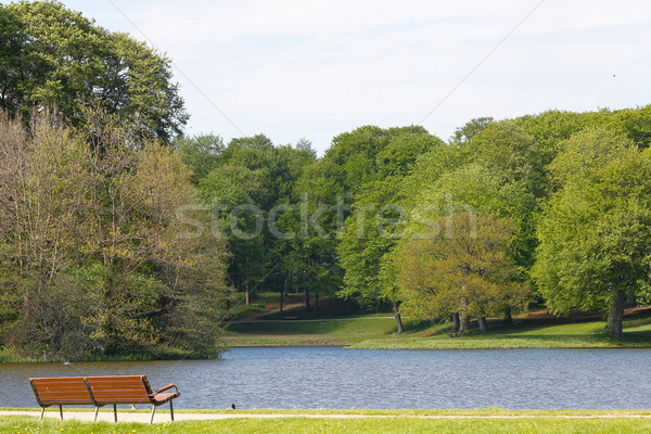 Bench, lake and tress Stock photo © bigandt