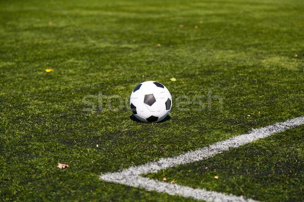 サッカー ピッチ 黒白 サッカーボール 緑 草 ストックフォト © bigandt