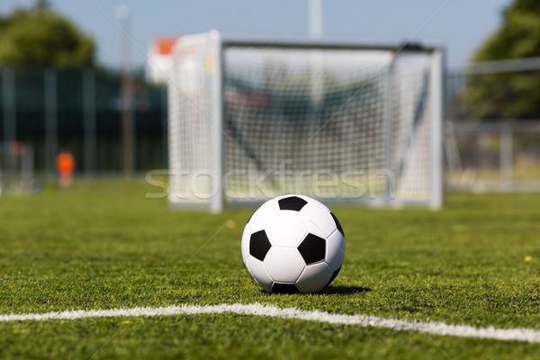 Futball létesítmény feketefehér futballabda zöld pálya Stock fotó © bigandt