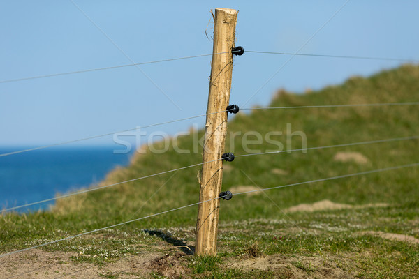 Eletric fence Stock photo © bigandt