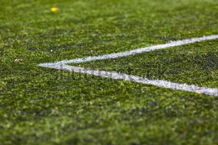 Football gazon vert pas Photo stock © bigandt