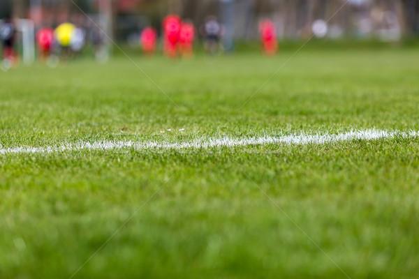 サッカー ピッチ クローズアップ 白 行 緑 ストックフォト © bigandt