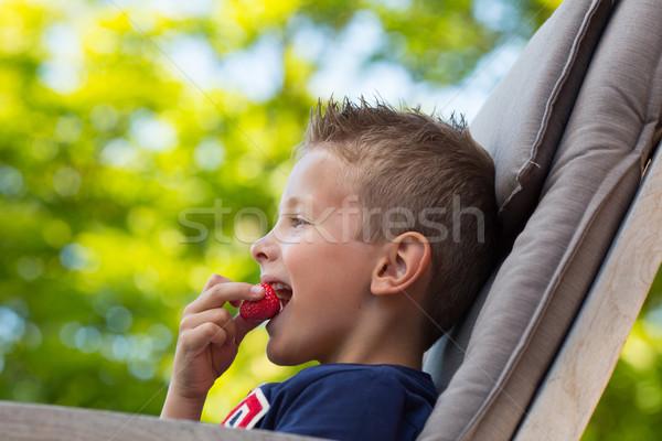 Boy eating strawberry Stock photo © bigandt