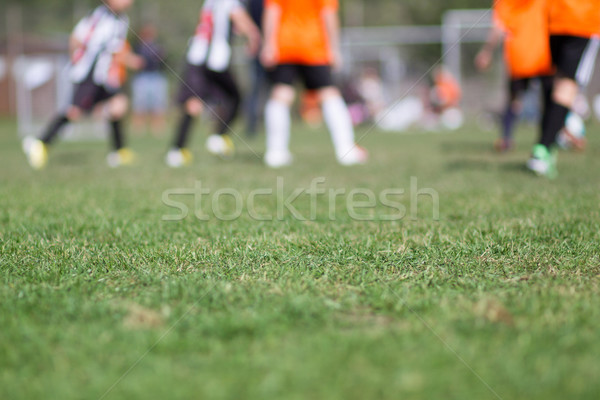 クローズアップ サッカー ピッチ 緑の草 サッカー ぼやけた ストックフォト © bigandt