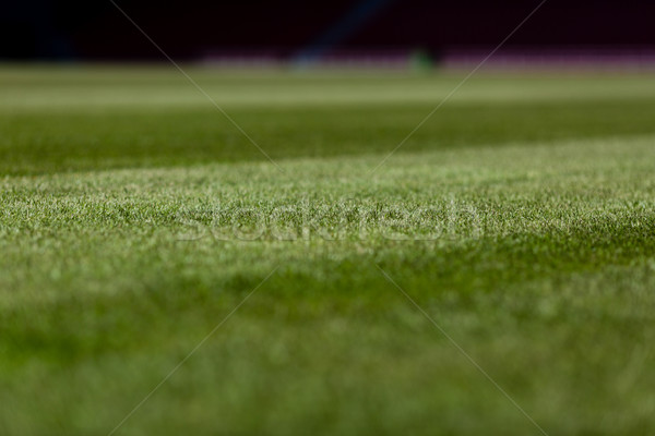 Soccer pitch Stock photo © bigandt