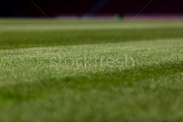 サッカー ピッチ パーフェクト 緑 準備 シーズン ストックフォト © bigandt