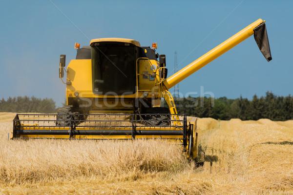 Yellow harvester Stock photo © bigandt