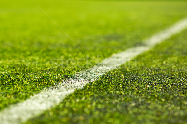 Artificial soccer pitch Stock photo © bigandt