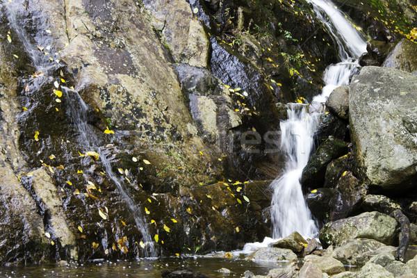 небольшой водопада пород природы лист фон Сток-фото © bigjohn36