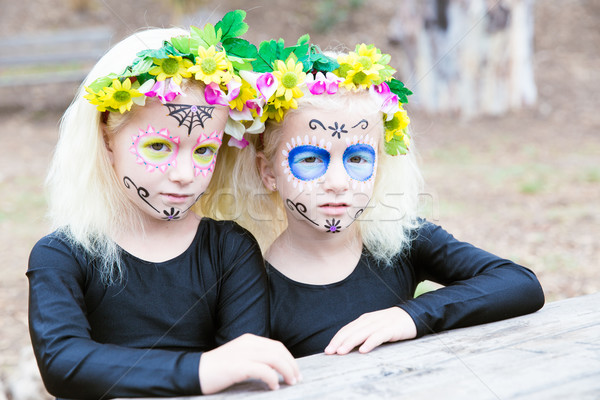 Halloween twin sisters Stock photo © BigKnell
