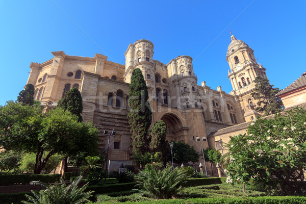 Malaga Cathedral Stock photo © BigKnell
