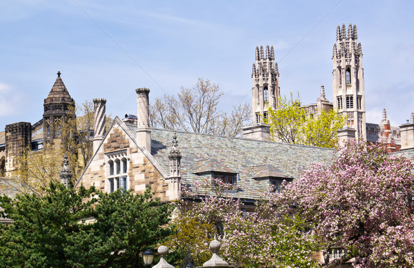 Yale University Sterling Law Building Stock photo © billperry