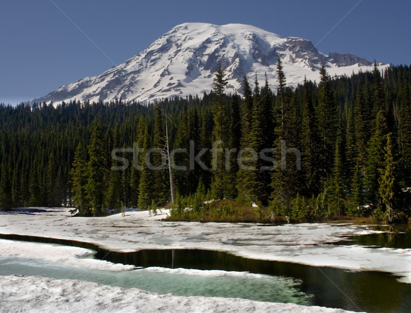 Icy Reflection Lake Mount Rainier Stock photo © billperry