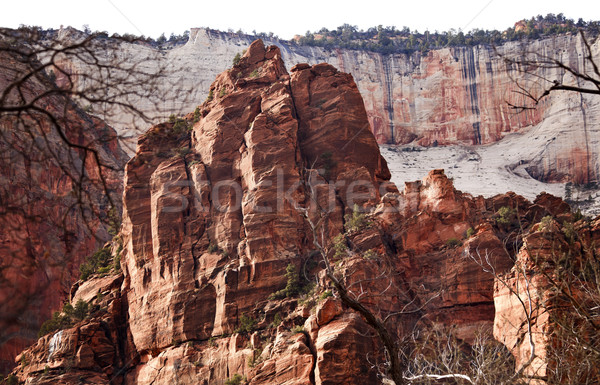 Rood rotsen groot witte troon canyon Stockfoto © billperry