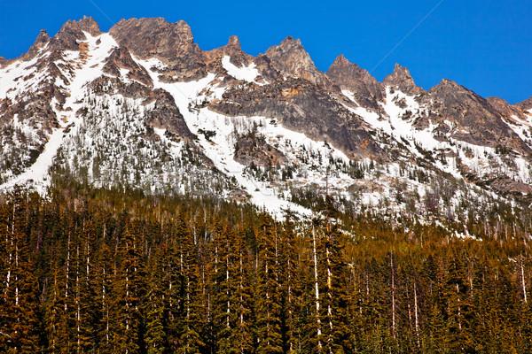Snowy Kangaroo Ridge Washington Pass Summer North Cascades Nati Stock photo © billperry