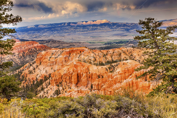 Amphitheater Hoodoos Bryce Point Bryce Canyon National Park Utah Stock photo © billperry