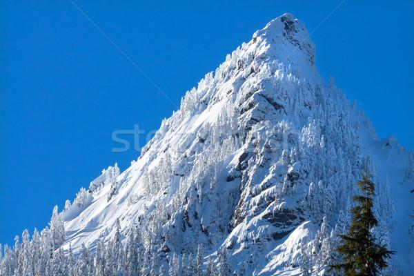 Hó hegycsúcs passz Washington hegy vízesés Stock fotó © billperry