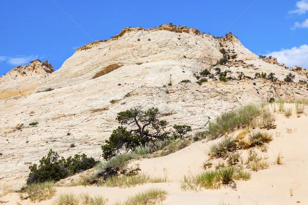 White Sandstone Mountain Near Bryce Canyon National Park Utah  Stock photo © billperry
