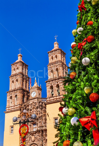 Kerstboom kathedraal Mexico boom decoraties vader Stockfoto © billperry