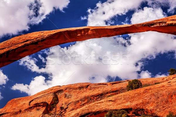 Landschap boog rock canyon tuin Stockfoto © billperry