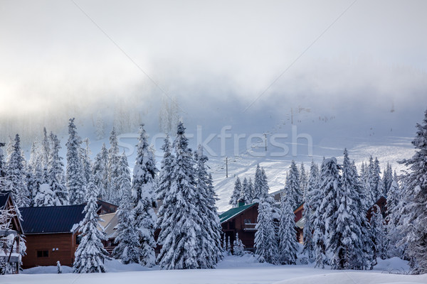 Sking Under the Fog Chairlifts at Snoqualme Pass Washington Stock photo © billperry