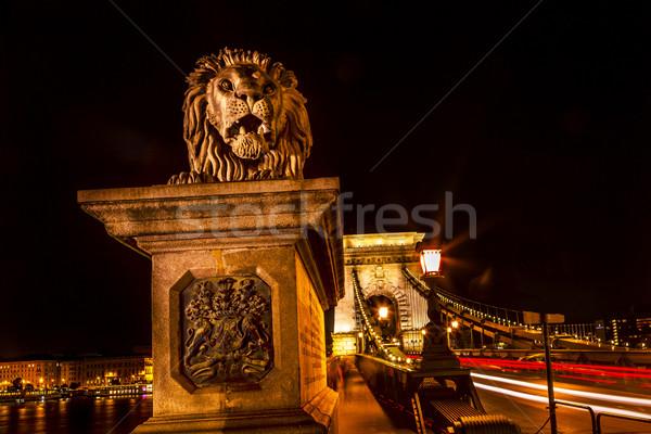 チェーン 橋 ライオン ドナウ川 川 信号 ストックフォト © billperry