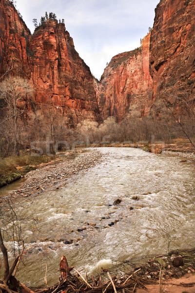 Szűz folyó kanyon park Utah piros Stock fotó © billperry