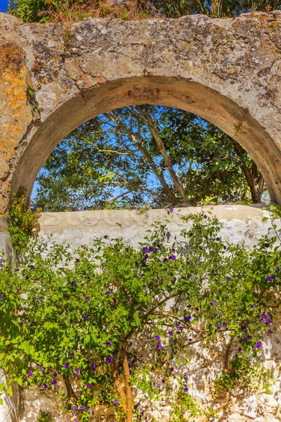 Antigo azul flores Portugal edifícios cityscape Foto stock © billperry
