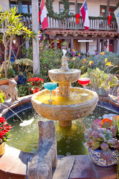 Fountain Margarita Glasses Flowers Garden Cactus Old San Diego C Stock photo © billperry