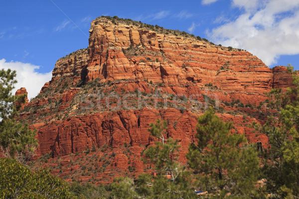 Czerwony rock kanion mały konia parku Zdjęcia stock © billperry