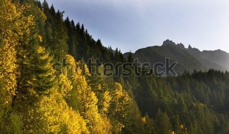 Fall Colors Stevens Pass Leavenworth Washington Stock photo © billperry