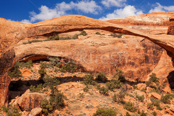 Landscape Arch Rock Canyon Devils Garden Arches National Park Mo Stock photo © billperry