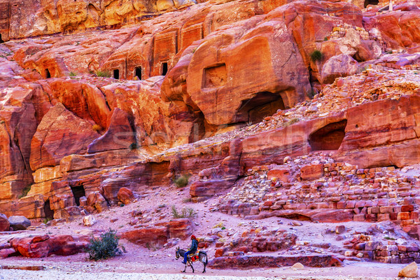 Donkey Rose Red Rock Tombs Afternoon Street of Facades Petra Jor Stock photo © billperry
